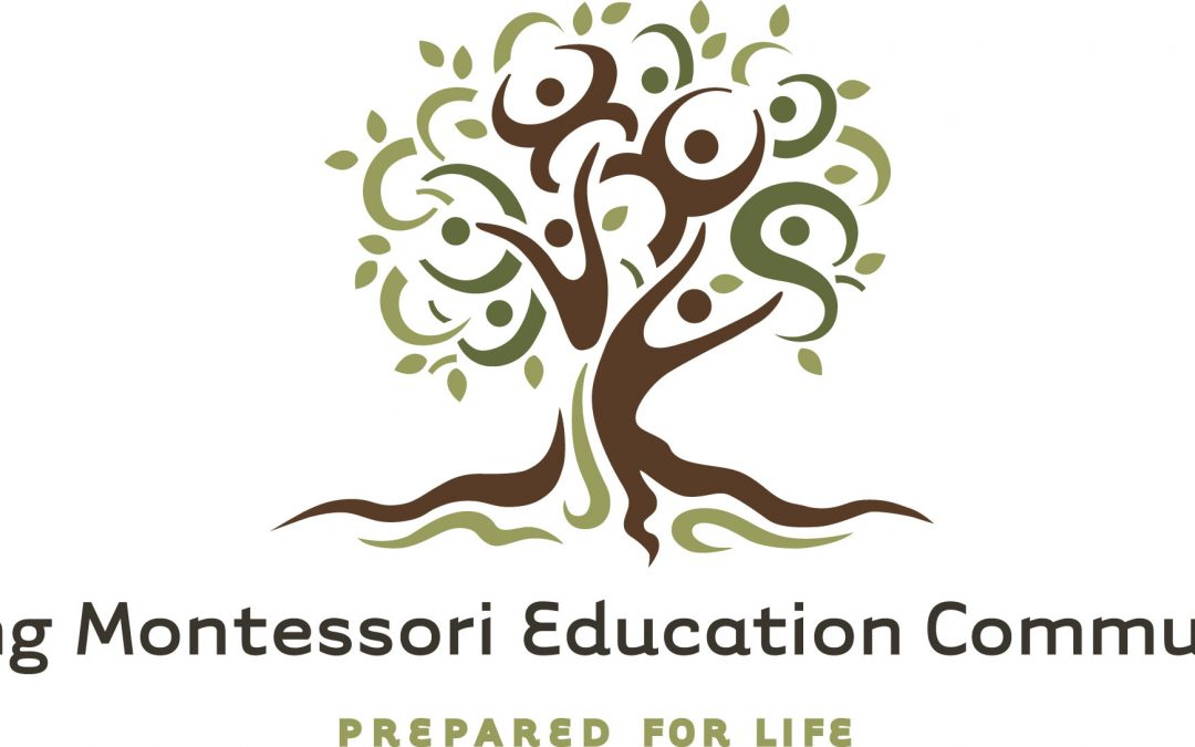 Montessori School Director